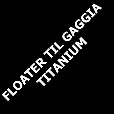 Floater til Gaggia Titanium