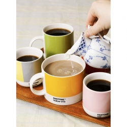 Pantone Latte Termokrus 22 cl Pink