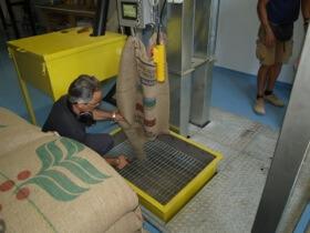 De grønne kaffebønner hældes ind i systemet
