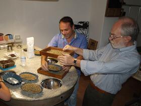 Enrico Meschini igang med at udvælge grønne kaffebønner.