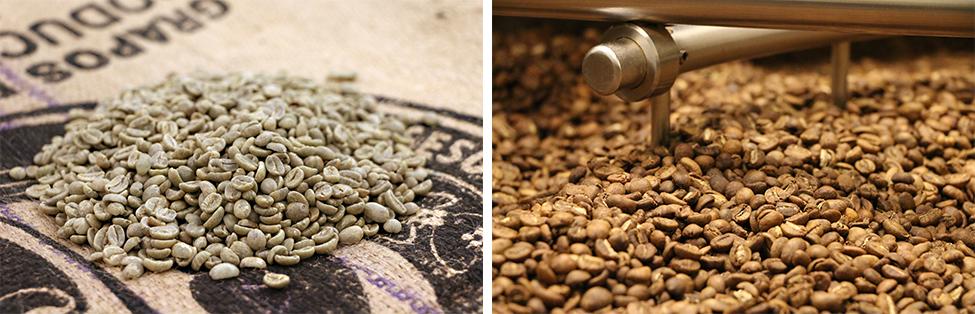 Grønne kaffebønner og ristede kaffebønner