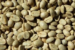 Grønne kaffebønner - Hvorfor er kaffebønnerne grønne og hvordan skal de ristes?